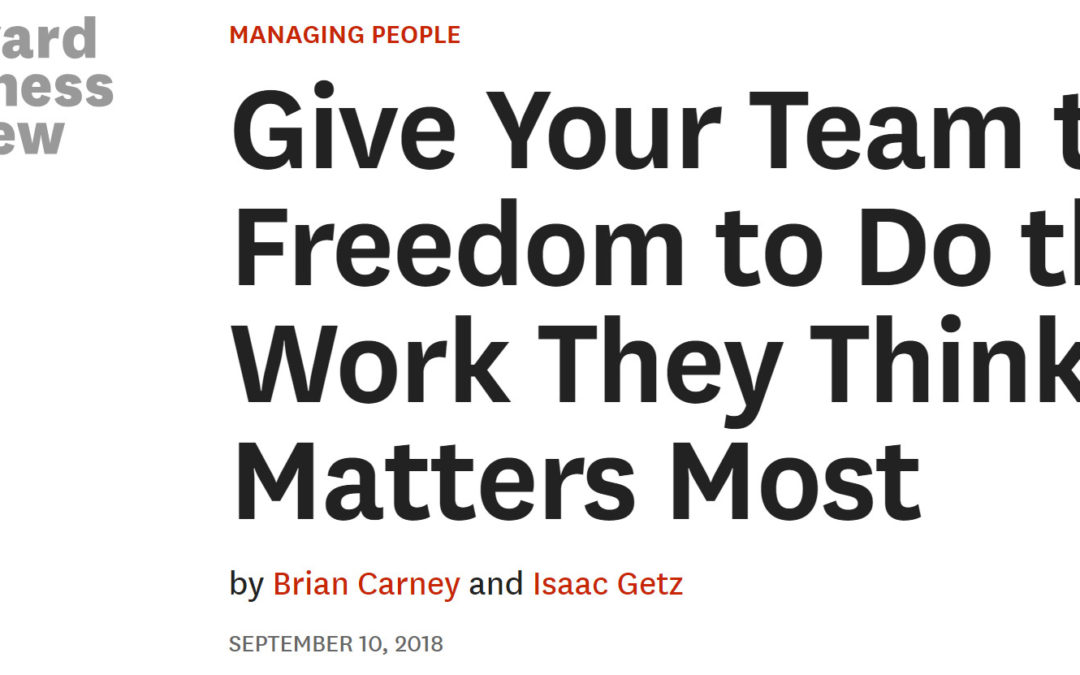 Give Your Team the Freedom: our article in Harvard Business Review